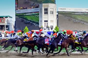 Horse Racing Needs To Take Notice Of What Sports Betting Can Offer Gamblers