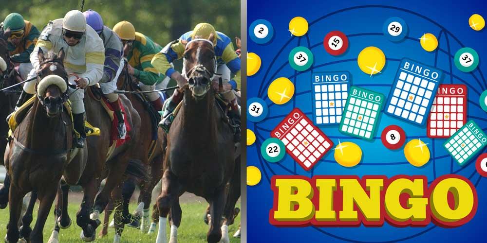 Nevada Horse Racing Betting - Bingo
