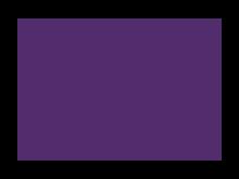 Btreeder's Cup Logo
